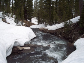 Cold Stream at bridge on Mt. Lola Trail